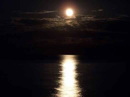 diego-torres-silvestre_moonlight..._zkvkrq.jpg.jpeg